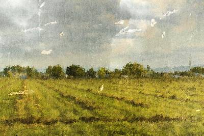 Hay Fields In September Poster