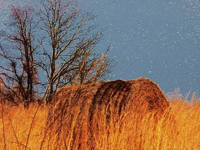 Hay Roll In The Field Poster by Joyce Kimble Smith