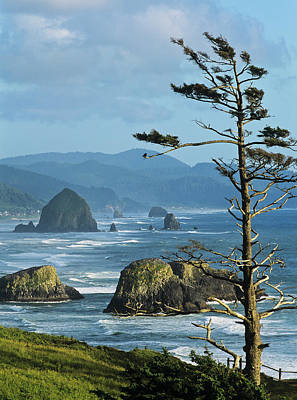 Haystack Rock Viewed From Ecola Point Poster by Robert L. Potts