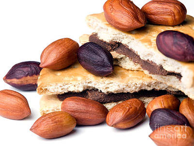 Hazelnuts And Cookies Poster by Sinisa Botas