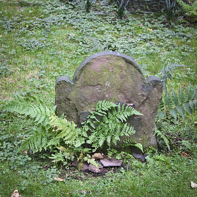 Headstone And Ferns Squared Poster by Teresa Mucha