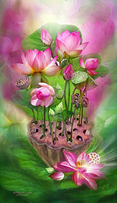Healing Lotus - Crown Poster by Carol Cavalaris