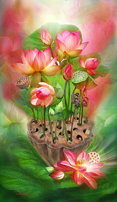 Healing Lotus - Root Poster by Carol Cavalaris