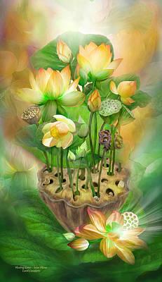 Healing Lotus - Solar Plexus Poster by Carol Cavalaris