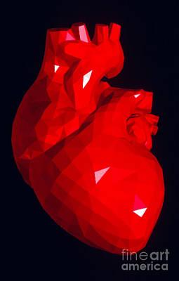 Heart Model Poster