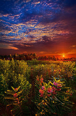 Heaven On Earth Poster by Phil Koch