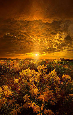 Heavenly Earth Poster by Phil Koch