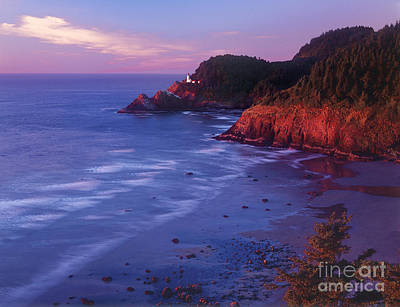 Poster featuring the photograph Heceta Head Lighthouse At Sunset Oregon Coast by Dave Welling