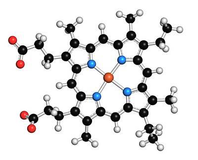 Heme B Molecule Poster