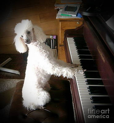 Henri Plays The Piano Poster