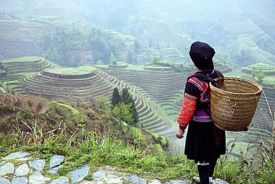 Her Rice Terraces Poster by King Wu