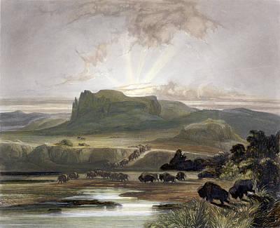 Herd Of Bison On The Upper Missouri Poster