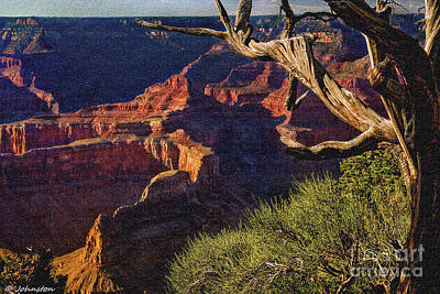 Hermit Rest Grand Canyon National Park Poster by Bob and Nadine Johnston