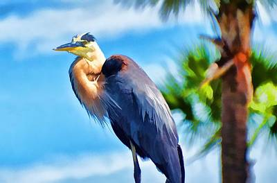 Poster featuring the photograph Heron And Palms by Pamela Blizzard