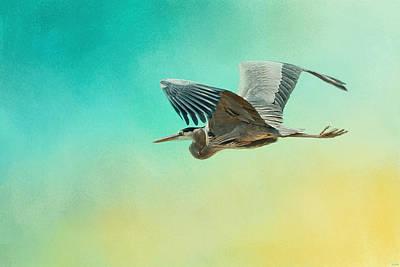 Heron At Sea Poster by Jai Johnson