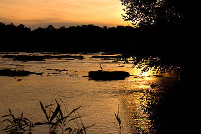 Poster featuring the photograph Heron At Sunset by Andy Lawless