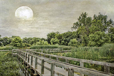 Heron Haven Boardwalk Poster by Jeff Swanson