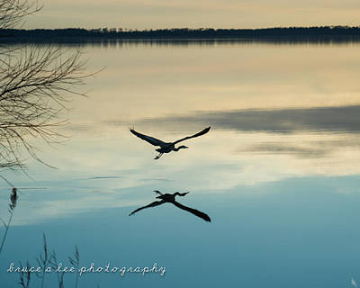 Heron Silhouette Poster by Bruce A  Lee