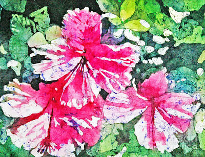 Hibiscus In The Sun Poster