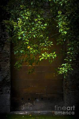 Hidden Door Poster by Svetlana Sewell