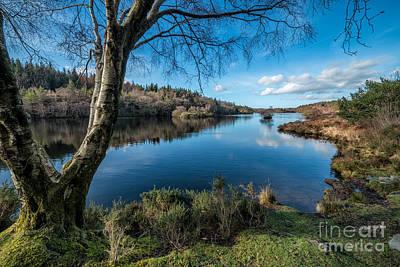 Hidden Lake Poster by Adrian Evans