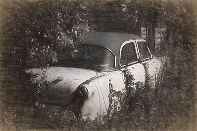 Hidden Treasure II Poster by Richard Rizzo