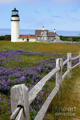 Poster featuring the photograph Highland Lighthouse by Paula Guttilla