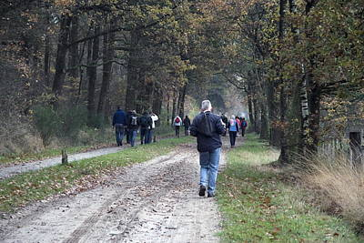 Hikers In Nature Dwingelderveld Netherlands Poster