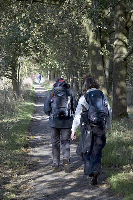 hikers in the nature Dwingelderveld who participated in the Africa Walk Poster