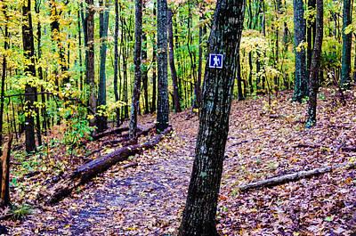 Hiking Trail During Autumn Season Poster by Alex Grichenko