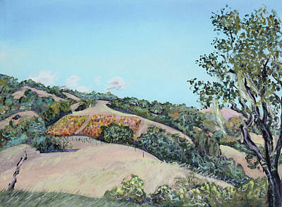 Hill Vineyard And Friendly Clouds Poster by Asha Carolyn Young