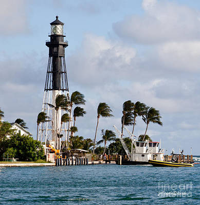 Hillsboro Inlet Lighthouse Poster by Michelle Wiarda