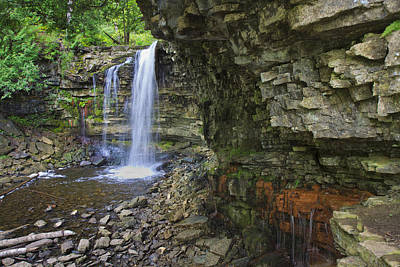 Poster featuring the photograph Hilton Falls In Summer by Gary Hall