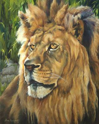Him - Lion Poster by Lori Brackett