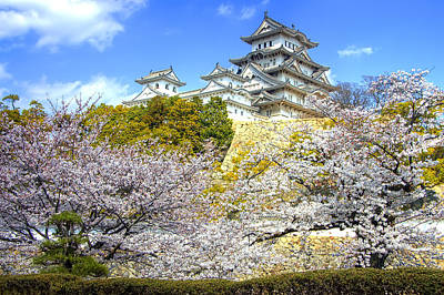 Himeji Castle In Spring Time Poster by Ilin Wu