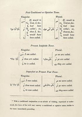 Hindustani Grammar Poster by Middle Temple Library