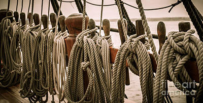 Hms Bounty Riggins And Ropes Poster