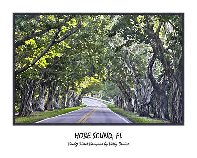 Hobe Sound Fl-bridge Street Banyans Poster by Betty Denise