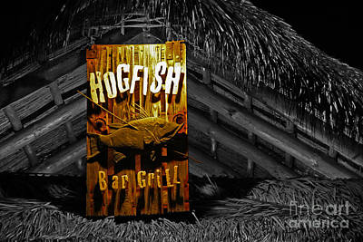 Hogfish Grill On Black Poster by Rick Bravo