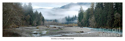 Hoh Rain Forest Poster by Twenty Two North Photography