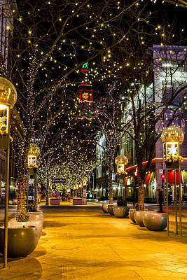 Holiday Lights In Denver Colorado Poster by Teri Virbickis