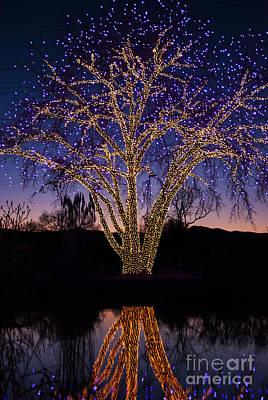 Holiday Lights Poster by Juli Scalzi