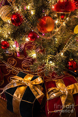Holiday Presents Under A Christmas Tree Poster