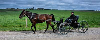 Horse And Buggy On The Farm Poster