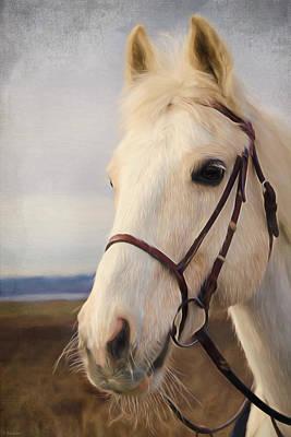 Horse Art - Beauty Is A Light Poster