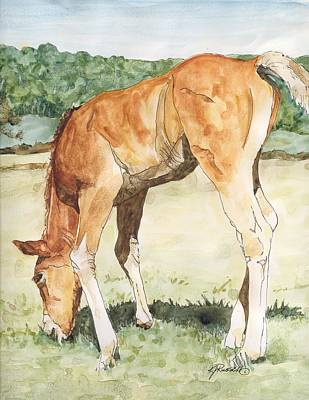Horse Art Long-legged Colt Painting Equine Watercolor Ink Foal Rural Field Artist K. Joann Russell  Poster