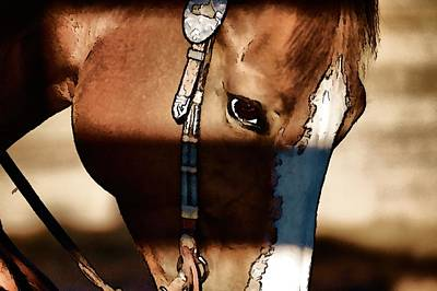 Horse At Work Poster by Pamela Blizzard