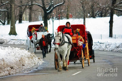 Horse Carriage Rides In The Snow In Central Park Poster by Nishanth Gopinathan