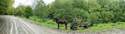 Horse Cart At Roadside, Bradu, Arges Poster