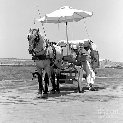 Horse Drawn Carriage In Crete Poster